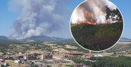 Uşak'ta Orman Yangını! Çevre İllerden Destek Geliyor