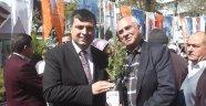 AK Parti Uşak İl Teşkilatı Fidan Dağıtım Etkinliği Düzenledi