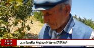 Hüseyin KARAHAN Kapaklar Köyünde Fındık Yetiştirdi...