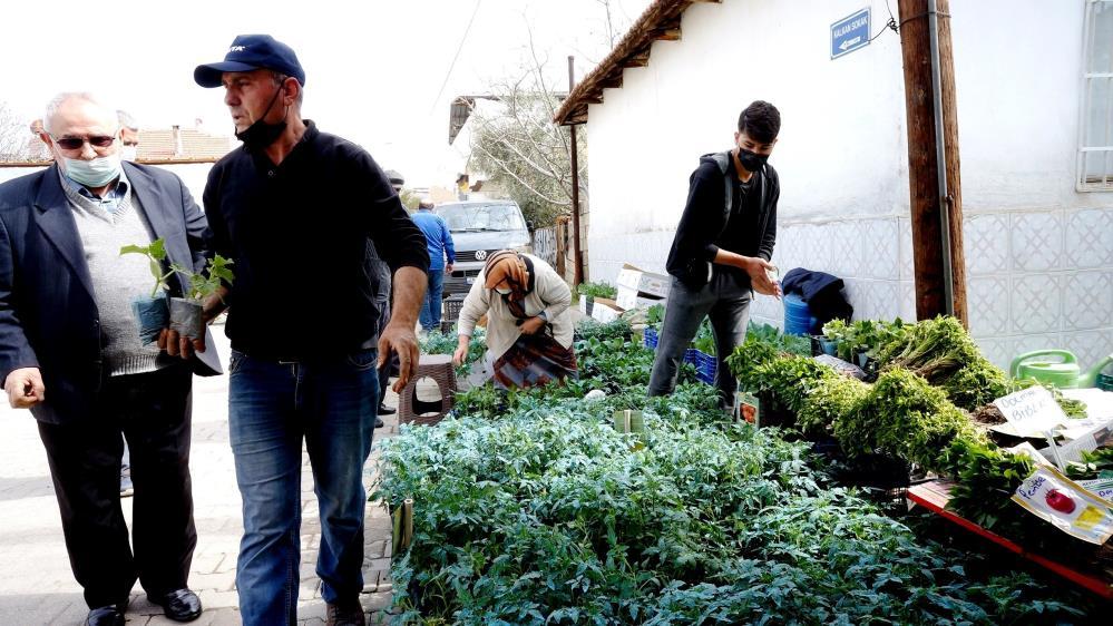 Sarıgöl'de sebze fide satışlarına büyük ilgi