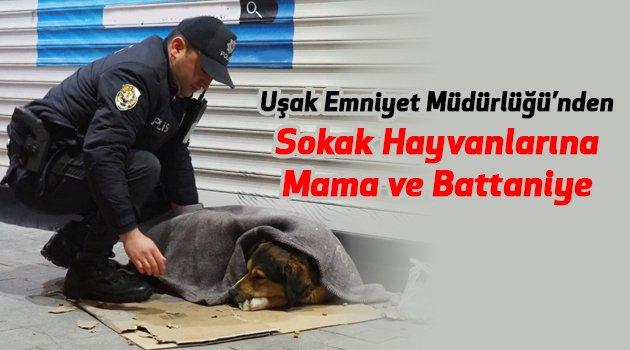 Uşak İl Emniyet Müdürü Mesut Gezer'den Talimat, 'Sokak hayvanlarına mama ve battaniye...'